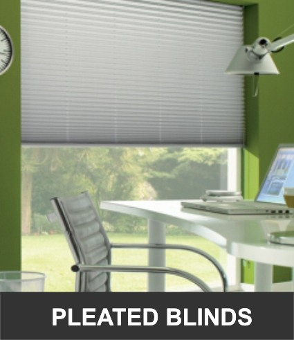 Office Pleated Blinds